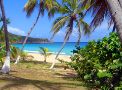 BVI,Lambert Resort